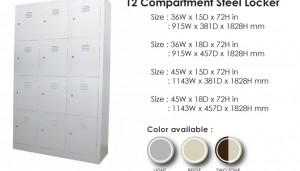 12 compartment